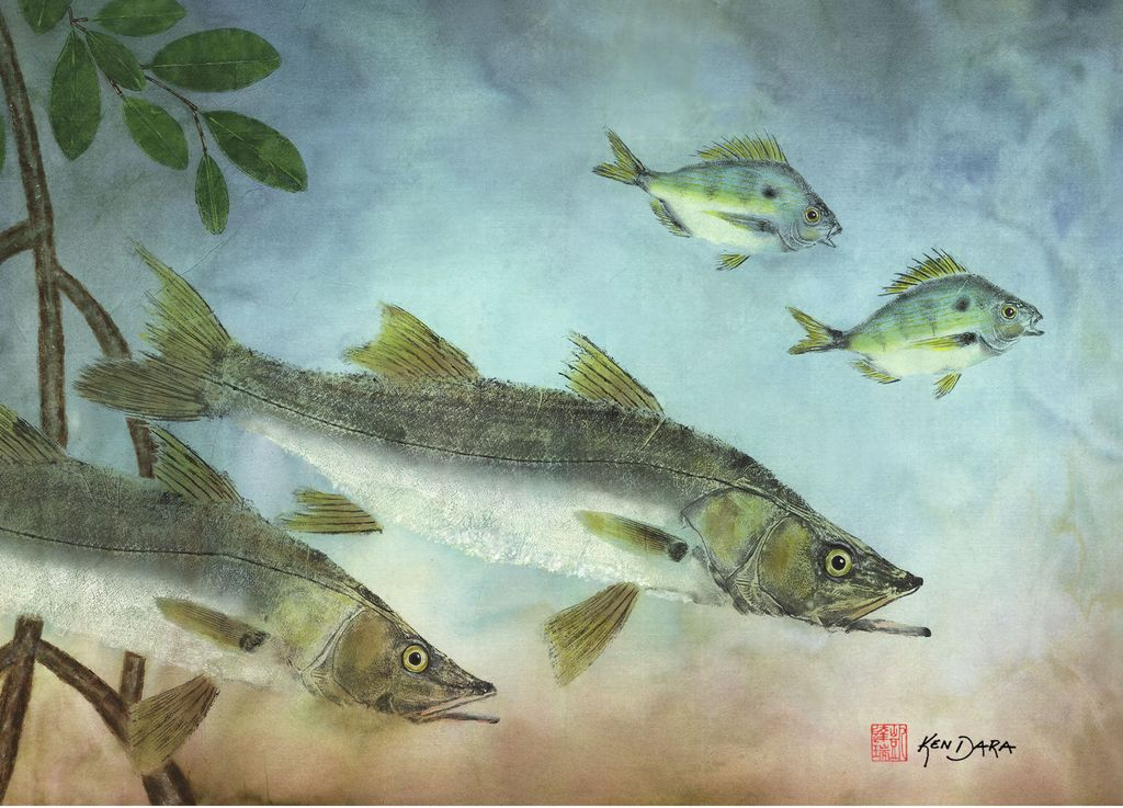 Ken Dara Indian River Snook (Gyotaku Giclee,  34x20, Framed, Signed)
