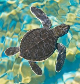 Rare Earth Gallery Mosaic Sea Turtle (Md, 203 Pieces, Artisanal Wooden Jigsaw Puzzle)