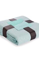 aden+anais metallic dream blanket