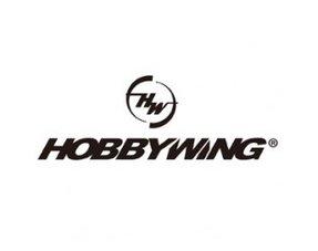 HOBBY WING