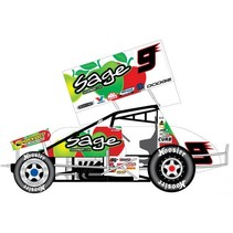 2007 KASEY KAHNE SAGE FRUIT 1/25 DIECAST SPRINT CAR