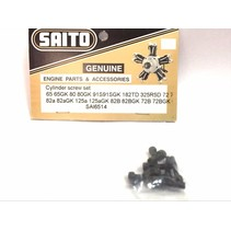 SAITO 65-80B SCREW SET C