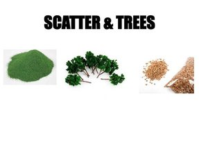 SCATTER & TREES