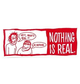 Skate Real Nothing Is Real Decal Asst. Colors