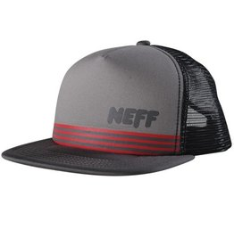 Neff Pinner Cap Grey