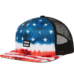 Billabong Billabong Boys Riot Trucker Hat USA