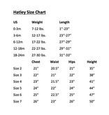 HATLEY SHARK ALLEY SHORT PJ SET