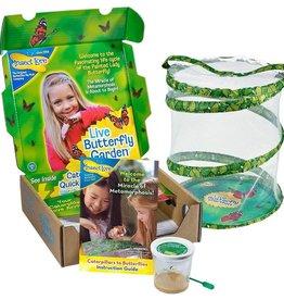 Butterfly Garden - Original