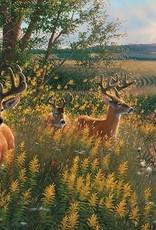 Cobble Hills Cobble Hills Summer Deer 1000pc Puzzle