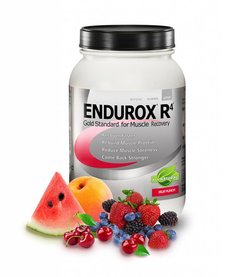 ENDUROX R4 FRUIT PUNCH-28 SERVING