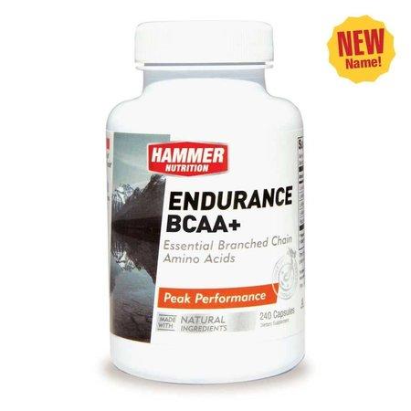 Hammer Nutrition Hammer Endurance BCAA+ (120 Capsules)