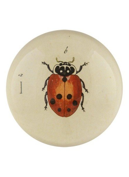 JOHN DERIAN John Derian Ladybug Dome Paperweight