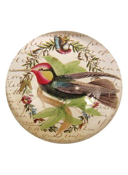 JOHN DERIAN John Derian Hummingbird Dome Paperweight