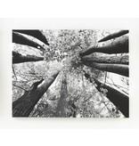 Signature Design Ananya Wall Art - Black/White, A8000035