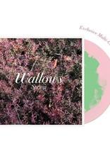 Wallows - Spring EP (Pink & Green Vinyl) (Explicit)