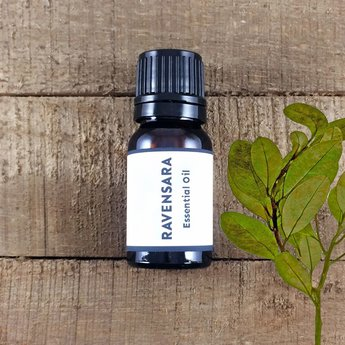 Ravensara Essential Oil