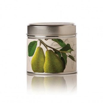 Rosy Rings Anjou Pear Soy Tin Candle
