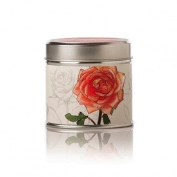 Rosy Rings Apricot Rose Soy Tin Candle