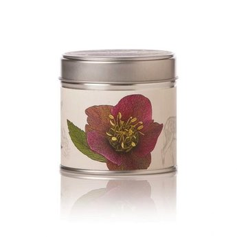 Rosy Rings Oak Moss & Myrrh Soy Tin Candle