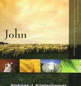 Kostenberger, Andreas J. John Commentary Vol. 2