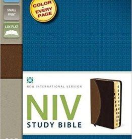 NIV Study Bible Compact  Tan Burgandy Indexed Red