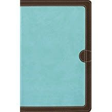 NIV Thinline Bible Leathersoft Blue Brown Red Letter 8891