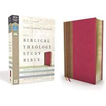 NIV Biblical Theology Study Bible pink/brown 0535
