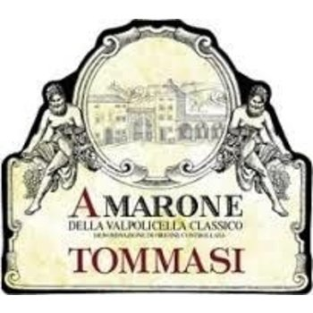 Tommasi Tommasi Amarone 2013<br />Piedmont, Italy