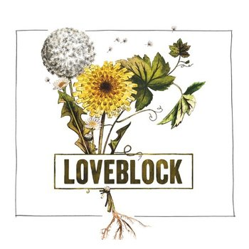 Kim Crawford Kim Crawford Loveblock Pinot Noir 2011  <br /> Central Otago, New Zealand