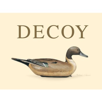 Duckhorn Duckhorn Decoy Sauvignon Blanc 2017<br /> Sonoma, California