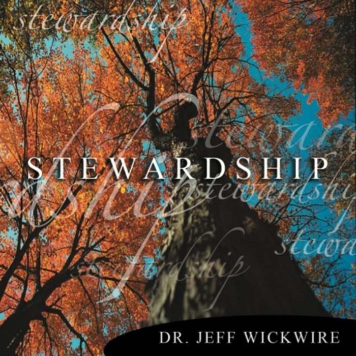 03(S031) - The Blessings Of Stewardship