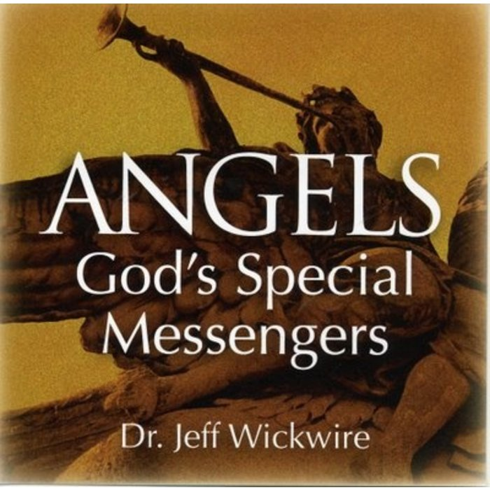 02(D012) - How Angels Are Organized
