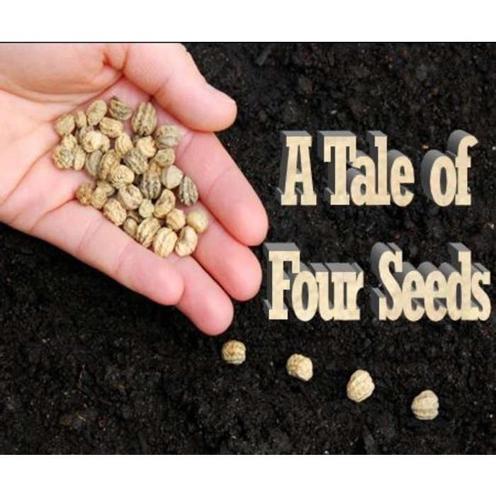 04(L021-L024) - A Tale Of Four Seeds