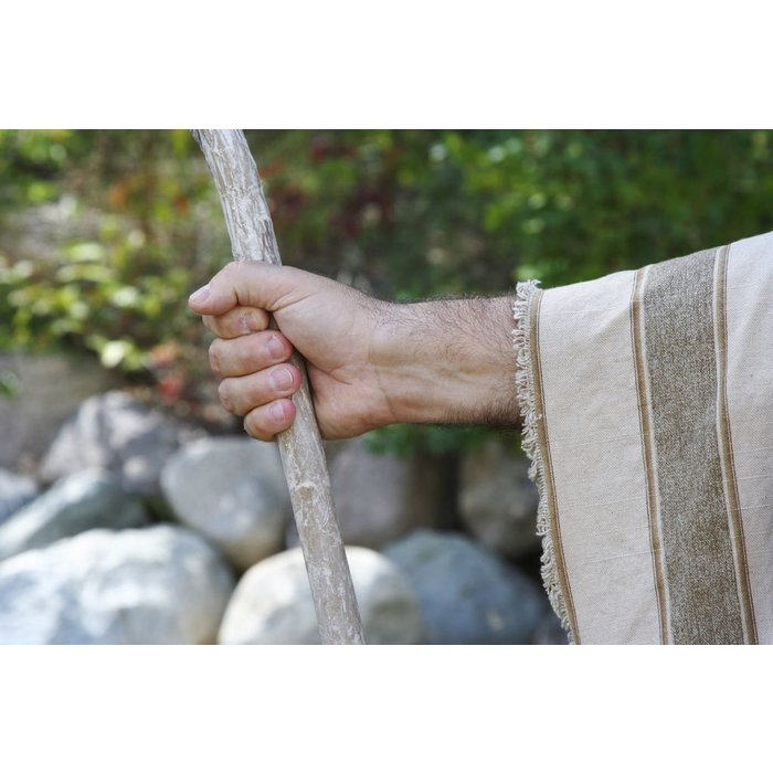 06(Q001-Q006) - The Shepherds Psalm