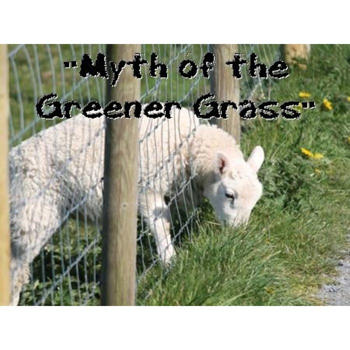 02(S027-S028) - The Myth Of The Greener Grass