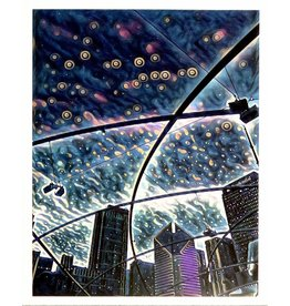 "Fine Art ""Millenium Park @ Midnight"" by Chloe Gartner"