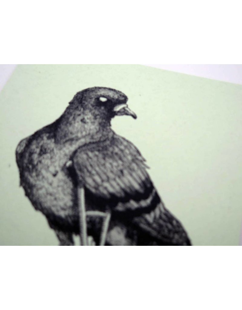 """The Usual Suspects Pt. 1"" (Roost/Pigeon) editioned screenprint, Lily Cozzens"