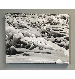 Lake Michigan Ice Storm by Josh Greve