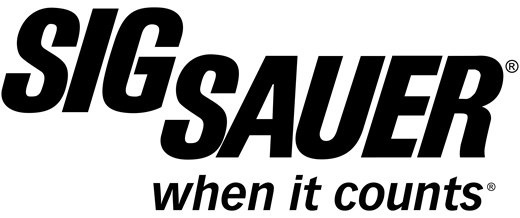 Sigsauer Sig Sauer P320 Carry 3.9In Romeo 1 Sight 2-10Rd