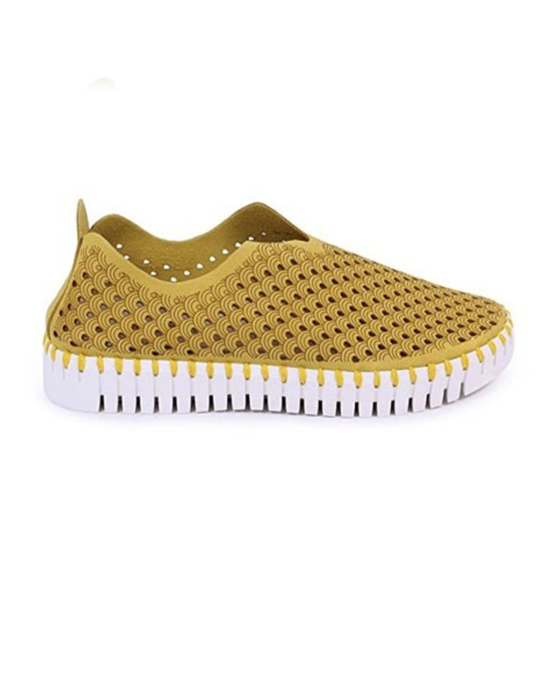 Ilsa Jacobsen Tulip Shoe In Golden Rod