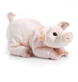 Pig Beanbag