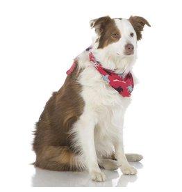 Kickee Pants Kickee Pants Dog Bandana: Flag Red Cowboy