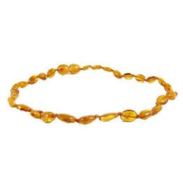 Amber Monkey Polished Baltic Amber 10-11 inch Necklace - Honey Bean POP