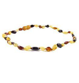 Amber Monkey Polished Baltic Amber 10-11 inch Necklace - Multi Bean