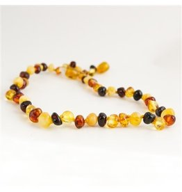 Amber Monkey Polished Baroque Baltic Amber 10-11 inch Necklace - Rainbow POP