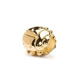 Gold Ladybug