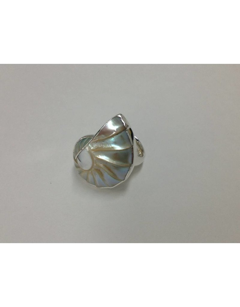 Nautilus Shell Ring Adjustible