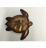 Copper Sea Turtle Lge 12X12 Clear Coat