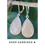 Teardrop Leverback Earrings SS