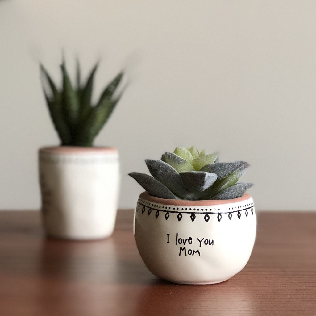 "Natural Life ""I Love You Mom"" Succulent Keepsake"